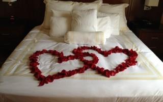 Gastblog: Uw specialist in rozenblaadjes